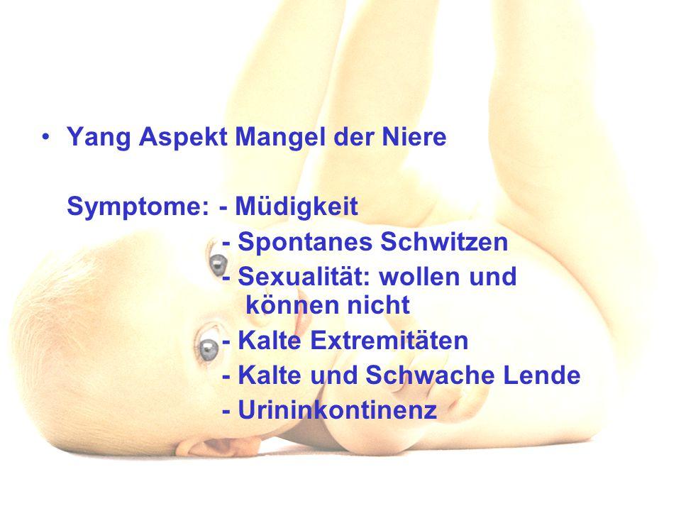 Yang Aspekt Mangel der Niere Symptome: - Müdigkeit - Spontanes Schwitzen - Sexualität: wollen und können nicht - Kalte Extremitäten - Kalte und Schwac