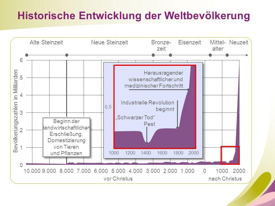 Historische Entwicklung der Weltbevölkerung 10.000 0 1 2 3 4 5 6 9.000 Alte SteinzeitNeue SteinzeitBronze- zeit EisenzeitMittel- alter Neuzeit 8.0007.