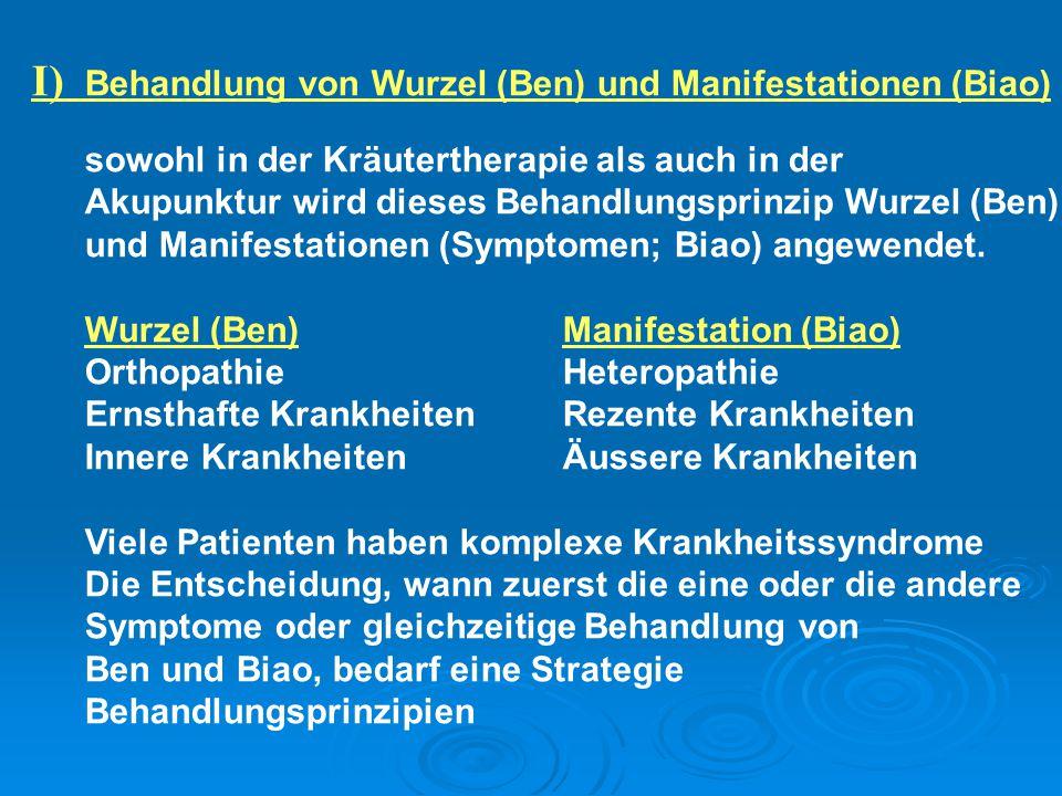 I) Behandlung von Wurzel (Ben) und Manifestationen (Biao) sowohl in der Kräutertherapie als auch in der Akupunktur wird dieses Behandlungsprinzip Wurz