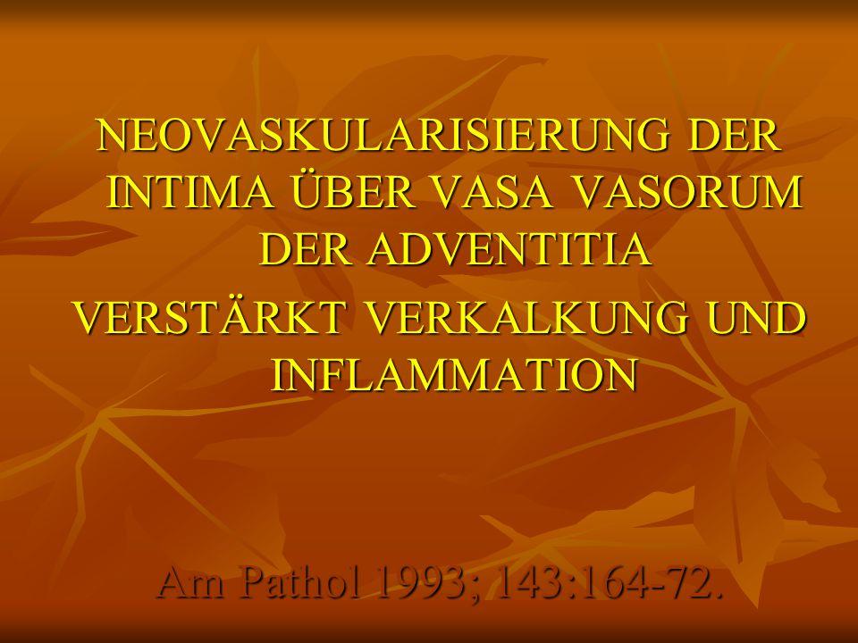 NEOVASKULARISIERUNG DER INTIMA ÜBER VASA VASORUM DER ADVENTITIA VERSTÄRKT VERKALKUNG UND INFLAMMATION Am Pathol 1993; 143:164-72.