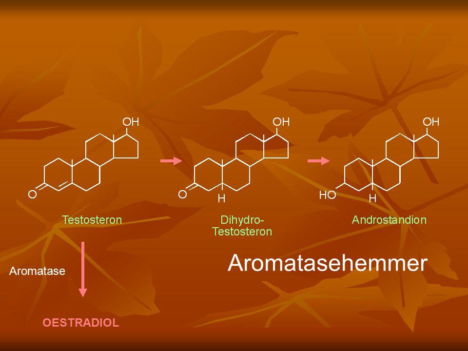 OESTRADIOL Aromatase Aromatasehemmer