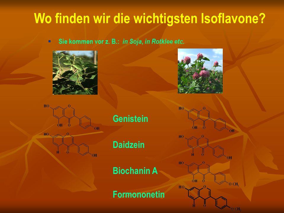 Wo finden wir die wichtigsten Isoflavone?  Sie kommen vor z. B.: in Soja, in Rotklee etc. Formononetin Daidzein Genistein Biochanin A