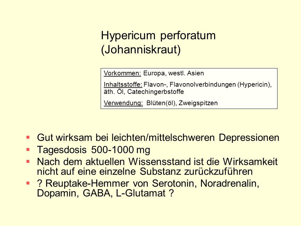 Hypericum perforatum (Johanniskraut)  Gut wirksam bei leichten/mittelschweren Depressionen  Tagesdosis 500-1000 mg  Nach dem aktuellen Wissensstand