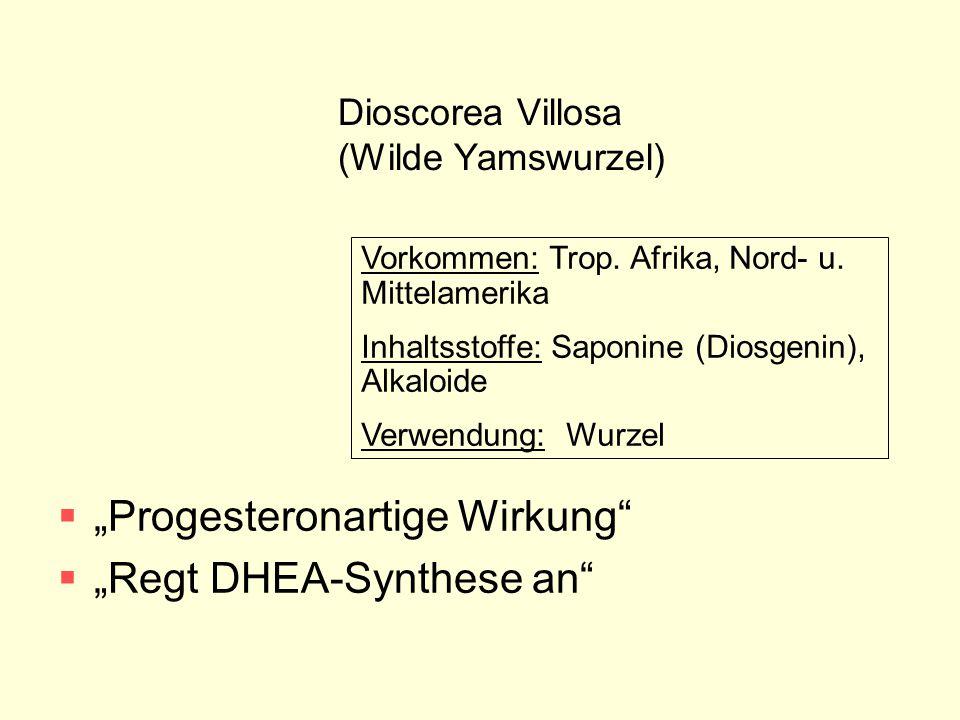 "Dioscorea Villosa (Wilde Yamswurzel)  ""Progesteronartige Wirkung""  ""Regt DHEA-Synthese an"" Vorkommen: Trop. Afrika, Nord- u. Mittelamerika Inhaltsst"