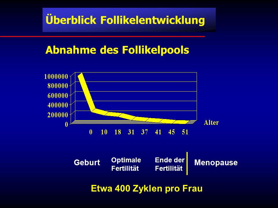 Abnahme des Follikelpools Geburt Optimale Fertilität Ende der Fertilität Menopause Etwa 400 Zyklen pro Frau Überblick Follikelentwicklung