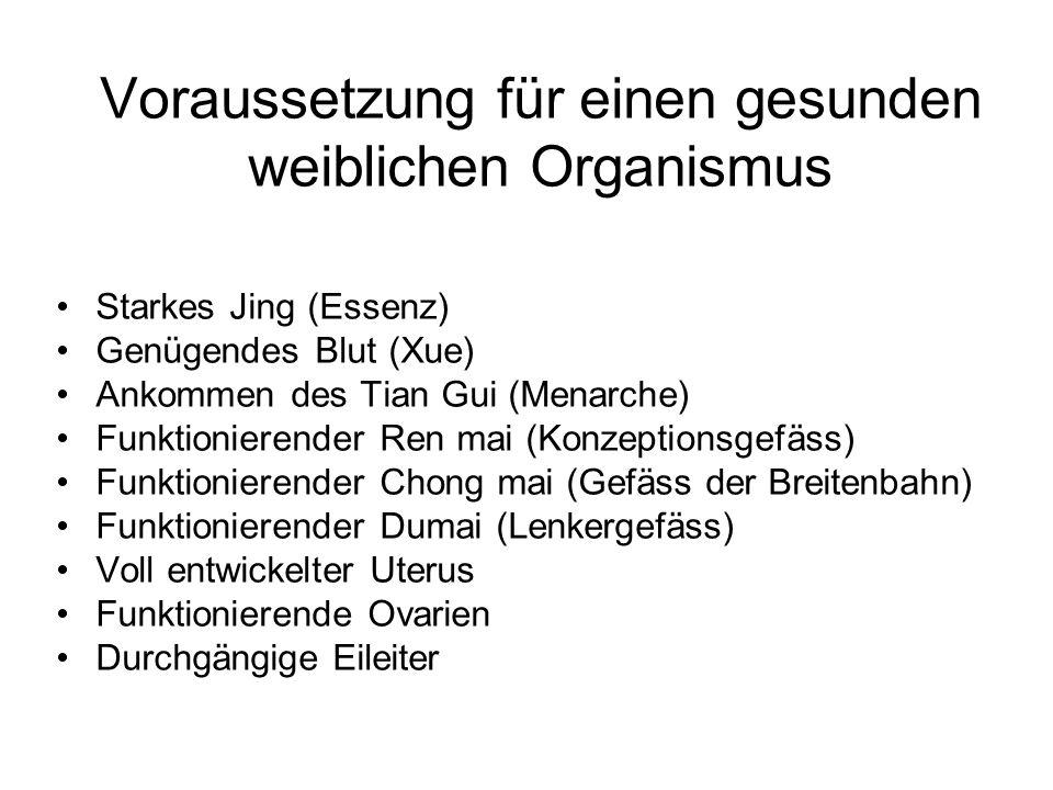 Voraussetzung für einen gesunden weiblichen Organismus Starkes Jing (Essenz) Genügendes Blut (Xue) Ankommen des Tian Gui (Menarche) Funktionierender R