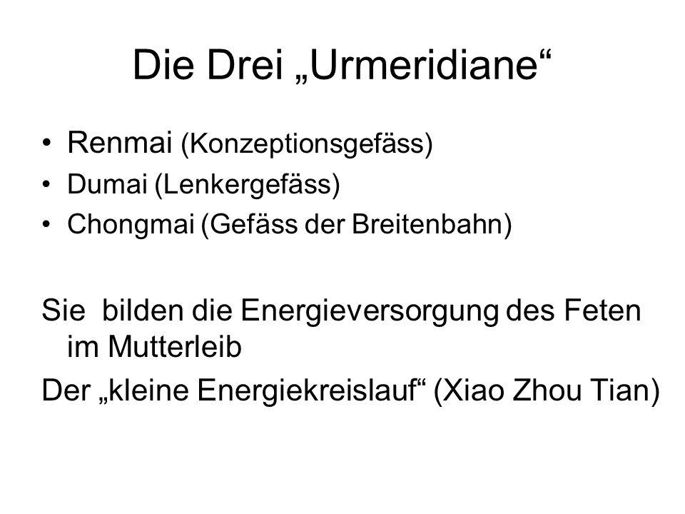 """Die Drei """"Urmeridiane"""" Renmai (Konzeptionsgefäss) Dumai (Lenkergefäss) Chongmai (Gefäss der Breitenbahn) Sie bilden die Energieversorgung des Feten im"""
