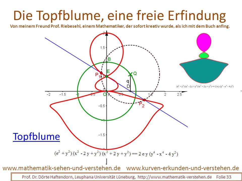 Die Topfblume, eine freie Erfindung Prof. Dr. Dörte Haftendorn, Leuphana Universität Lüneburg, http://www.mathematik-verstehen.de Folie 33 www.kurven-