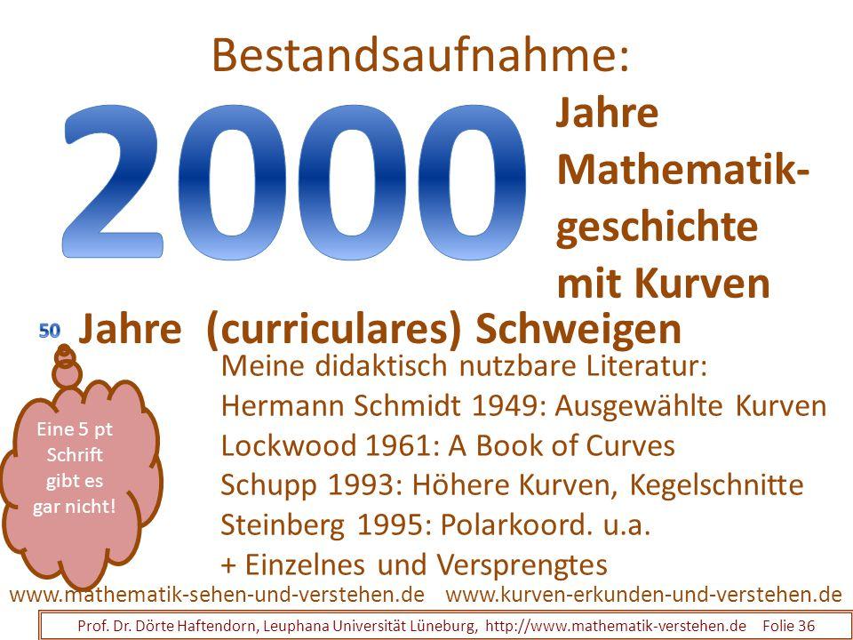 Bestandsaufnahme: Prof. Dr. Dörte Haftendorn, Leuphana Universität Lüneburg, http://www.mathematik-verstehen.de Folie 36 www.kurven-erkunden-und-verst