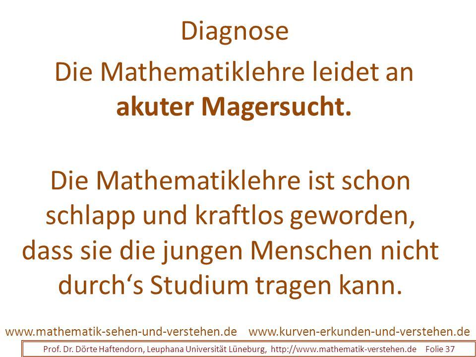 Diagnose Prof. Dr. Dörte Haftendorn, Leuphana Universität Lüneburg, http://www.mathematik-verstehen.de Folie 37 www.kurven-erkunden-und-verstehen.deww