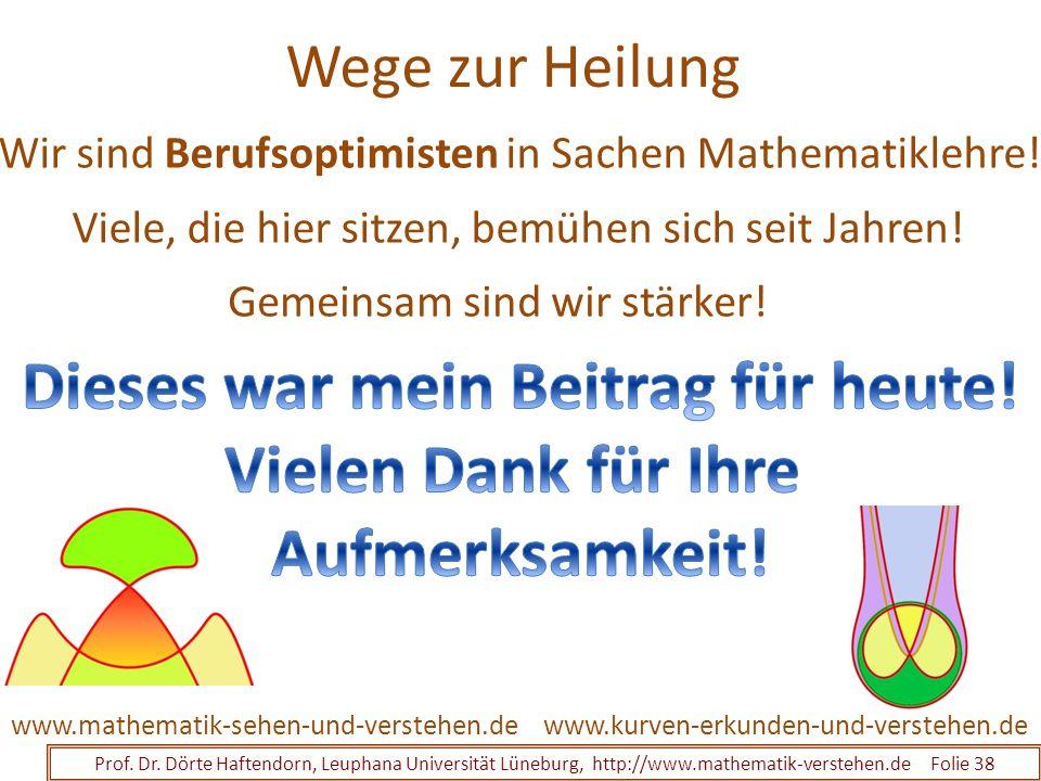 Wege zur Heilung Prof. Dr. Dörte Haftendorn, Leuphana Universität Lüneburg, http://www.mathematik-verstehen.de Folie 38 www.kurven-erkunden-und-verste