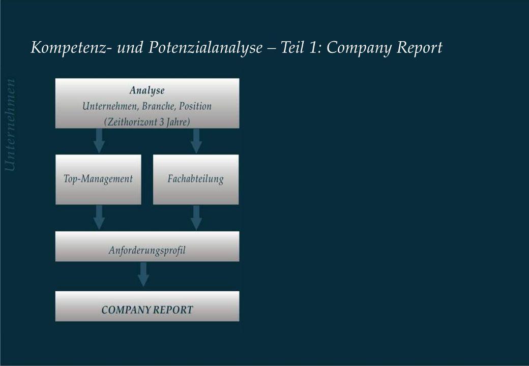 Kompetenz- und Potenzialanalyse – Teil 1: Company Report