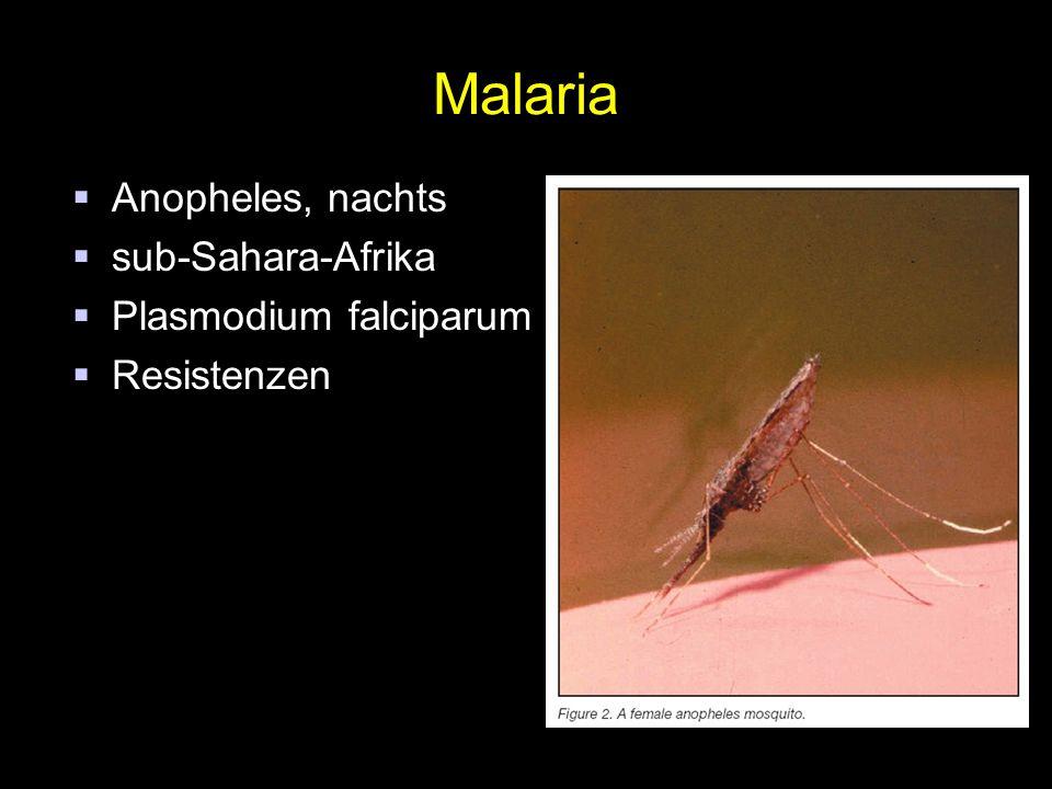 Malaria  Anopheles, nachts  sub-Sahara-Afrika  Plasmodium falciparum  Resistenzen