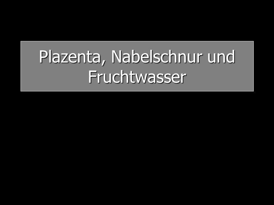 Plazenta praevia ca.0,5% am Termin Schmerzlose Blutung zwischen der 25.