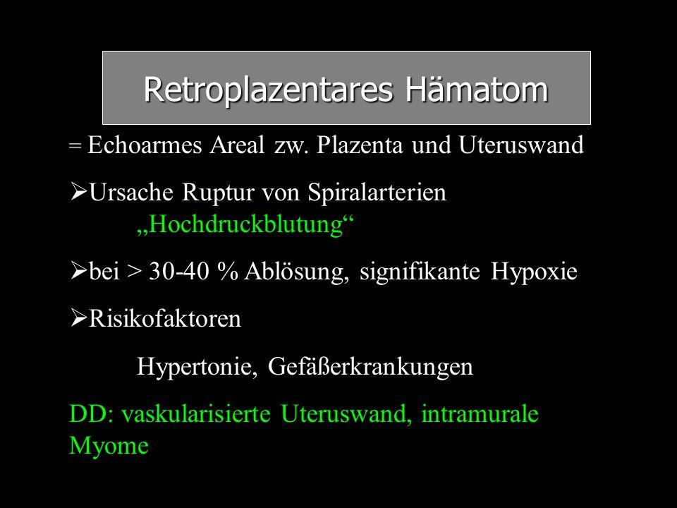 """Retroplazentares Hämatom = Echoarmes Areal zw. Plazenta und Uteruswand   Ursache Ruptur von Spiralarterien """"Hochdruckblutung""""   bei > 30-40 % Ablö"""