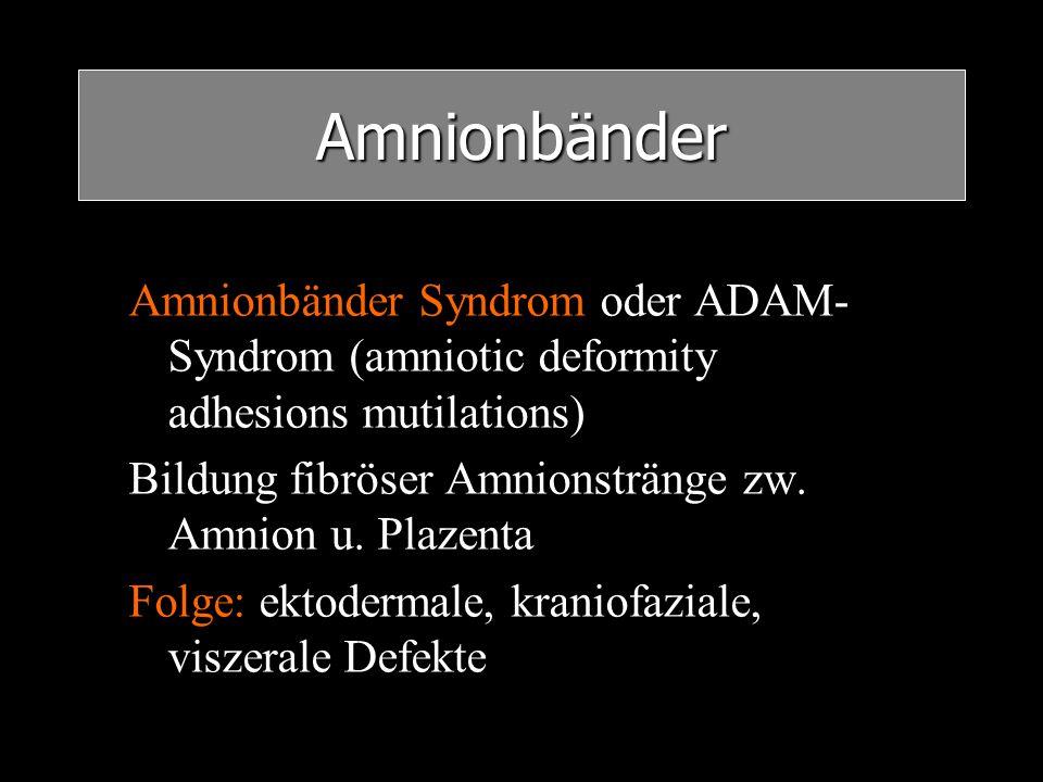 Amnionbänder Amnionbänder Syndrom oder ADAM- Syndrom (amniotic deformity adhesions mutilations) Bildung fibröser Amnionstränge zw. Amnion u. Plazenta
