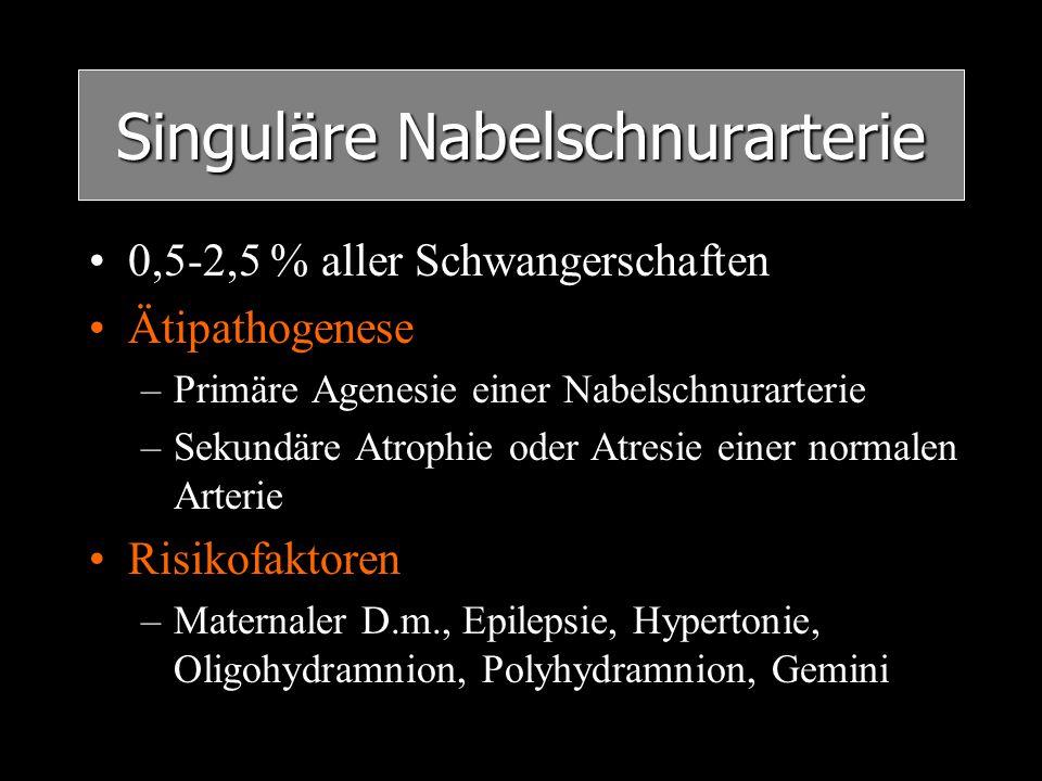Singuläre Nabelschnurarterie 0,5-2,5 % aller Schwangerschaften Ätipathogenese –Primäre Agenesie einer Nabelschnurarterie –Sekundäre Atrophie oder Atre