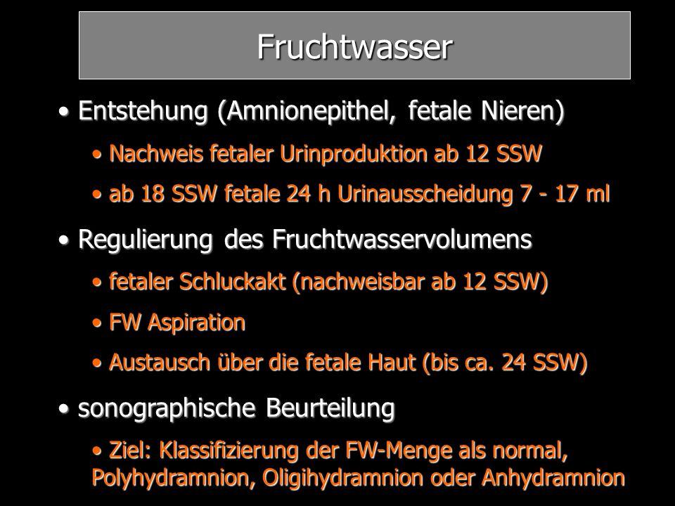 Fruchtwasser Entstehung (Amnionepithel, fetale Nieren) Entstehung (Amnionepithel, fetale Nieren) Nachweis fetaler Urinproduktion ab 12 SSW Nachweis fe