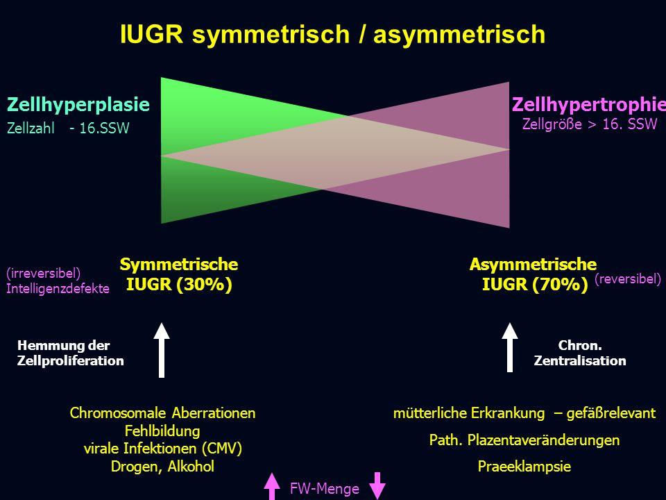 IUGR symmetrisch / asymmetrisch Zellhyperplasie Zellzahl - 16.SSW Symmetrische IUGR (30%) Chromosomale Aberrationen Fehlbildung virale Infektionen (CMV) Drogen, Alkohol FW-Menge mütterliche Erkrankung – gefäßrelevant Path.