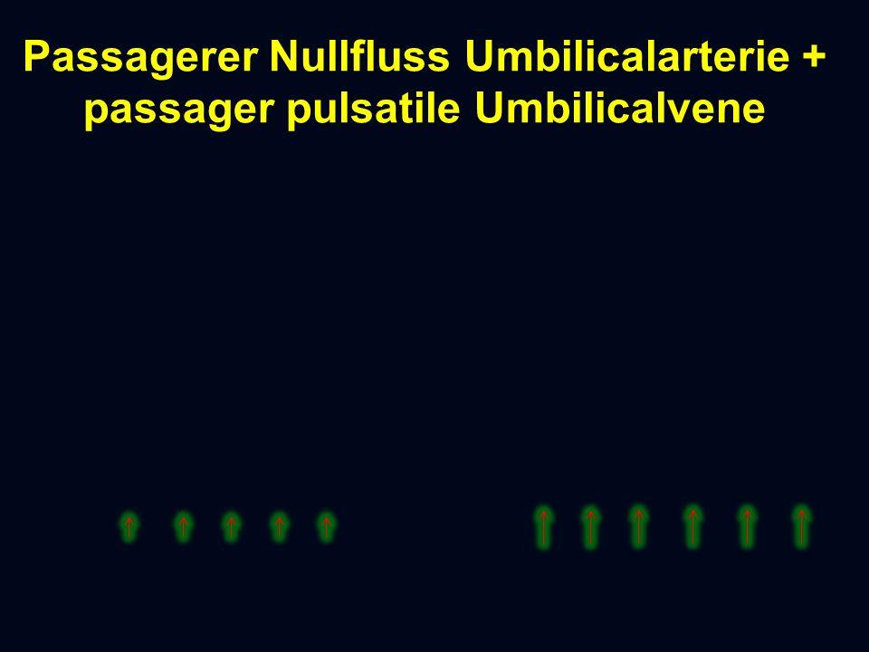 Passagerer Nullfluss Umbilicalarterie + passager pulsatile Umbilicalvene