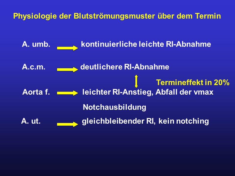 Physiologie der Blutströmungsmuster über dem Termin A. umb. kontinuierliche leichte RI-Abnahme A.c.m. deutlichere RI-Abnahme Aorta f. leichter RI-Anst