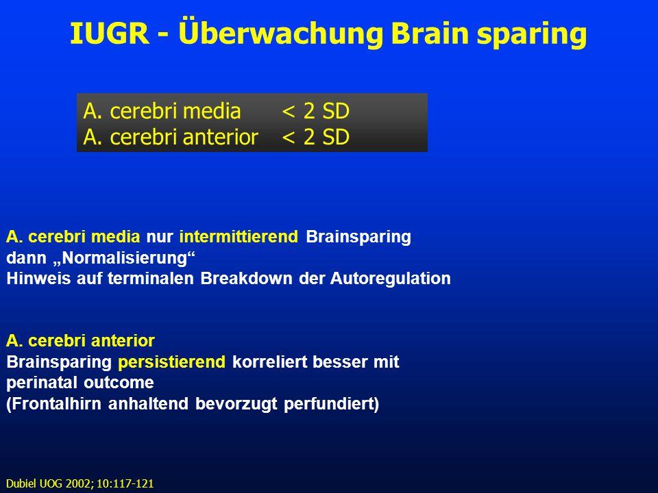 """IUGR - Überwachung Brain sparing A. cerebri media < 2 SD A. cerebri anterior < 2 SD IUGR A. cerebri media nur intermittierend Brainsparing dann """"Norma"""