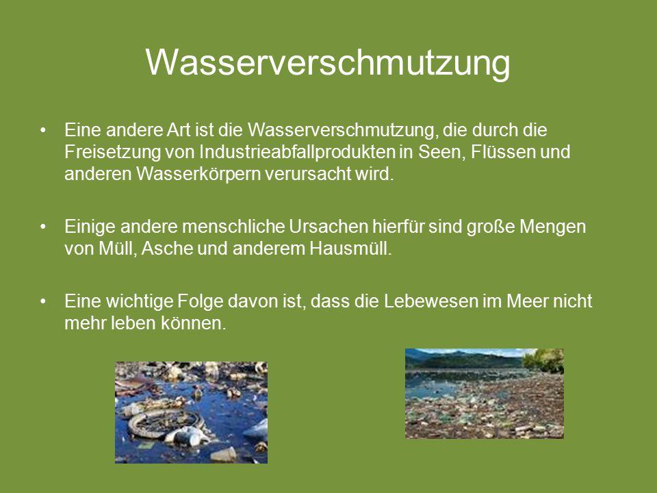 Wasserverschmutzung Eine andere Art ist die Wasserverschmutzung, die durch die Freisetzung von Industrieabfallprodukten in Seen, Flüssen und anderen Wasserkörpern verursacht wird.