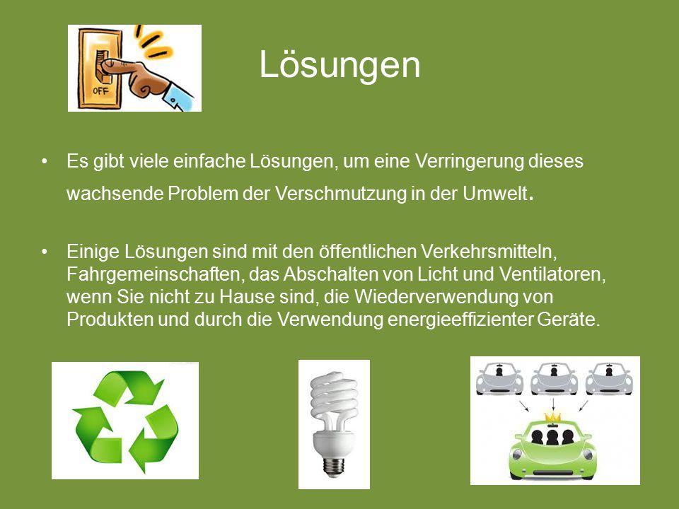 Lösungen Es gibt viele einfache Lösungen, um eine Verringerung dieses wachsende Problem der Verschmutzung in der Umwelt.