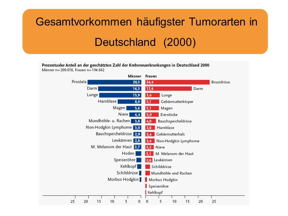 Gesamtvorkommen häufigster Tumorarten in Deutschland (2000)
