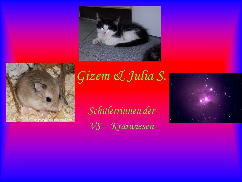 Gizem & Julia S. Schülerrinnen der VS - Kraiwiesen