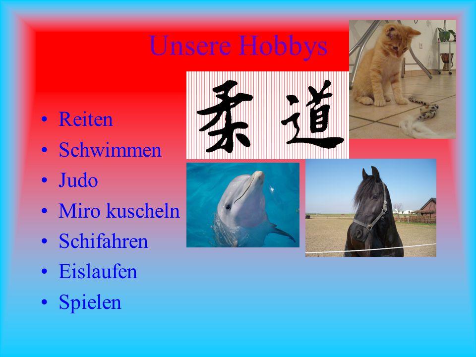 Unsere Hobbys Reiten Schwimmen Judo Miro kuscheln Schifahren Eislaufen Spielen