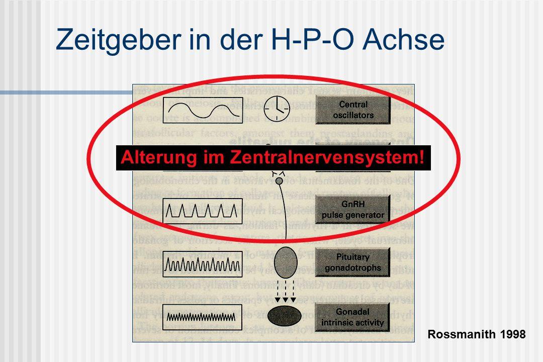 Zeitgeber in der H-P-O Achse Rossmanith 1998 Alterung im Zentralnervensystem!