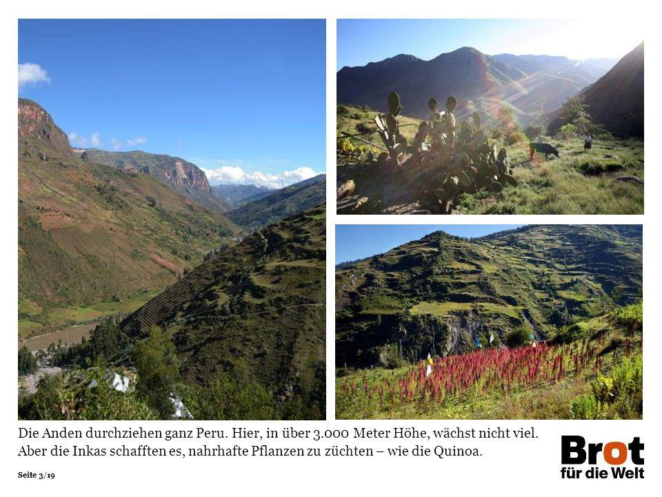 Seite 3/19 Die Anden durchziehen ganz Peru. Hier, in über 3.000 Meter Höhe, wächst nicht viel. Aber die Inkas schafften es, nahrhafte Pflanzen zu züch