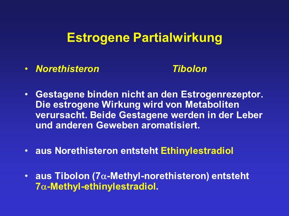 Estrogene Partialwirkung Norethisteron Tibolon Gestagene binden nicht an den Estrogenrezeptor. Die estrogene Wirkung wird von Metaboliten verursacht.