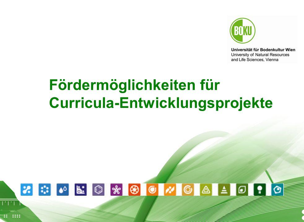 Workshop Finanzierung von Lehreprojekten Fördermöglichkeiten für Curricula-Entwicklungsprojekte