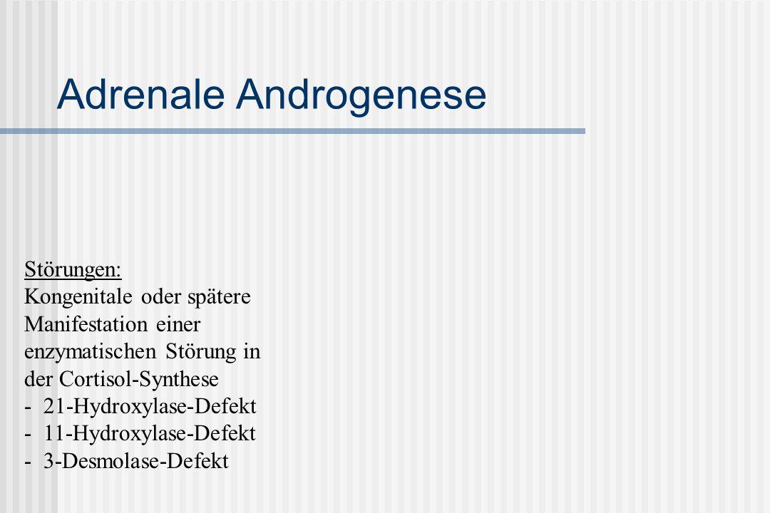 Adrenale Androgenese Störungen: Kongenitale oder spätere Manifestation einer enzymatischen Störung in der Cortisol-Synthese - 21-Hydroxylase-Defekt - 11-Hydroxylase-Defekt - 3-Desmolase-Defekt
