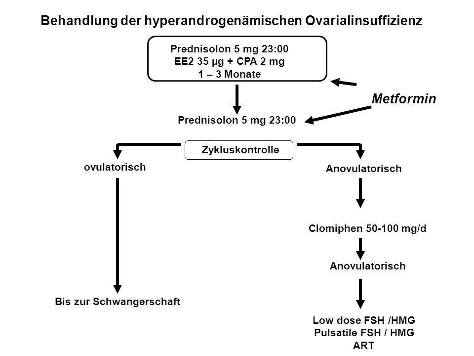 Behandlung der hyperandrogenämischen Ovarialinsuffizienz Prednisolon 5 mg 23:00 EE2 35 µg + CPA 2 mg 1 – 3 Monate Zykluskontrolle ovulatorisch Anovula