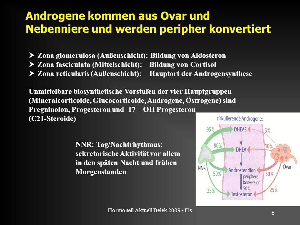Hormonell Aktuell Belek 2009 - Fis 6 Androgene kommen aus Ovar und Nebenniere und werden peripher konvertiert NNR: Tag/Nachtrhythmus: sekretorische Ak