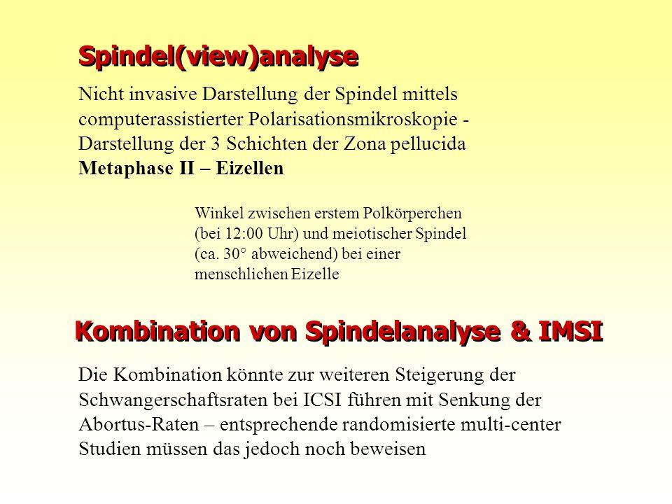 10.08.2015FIS Repromed - Gran Canaria 0810 Nicht invasive Darstellung der Spindel mittels computerassistierter Polarisationsmikroskopie - Darstellung