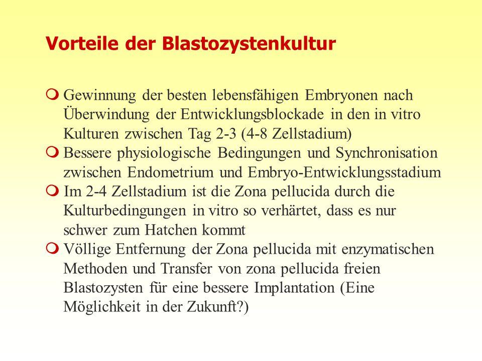10.08.2015FIS Repromed - Gran Canaria 0823 Vorteile der Blastozystenkultur  Gewinnung der besten lebensfähigen Embryonen nach Überwindung der Entwick