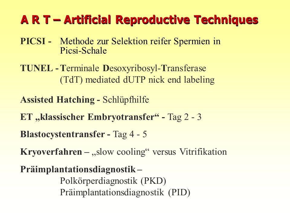 PICSI -Methode zur Selektion reifer Spermien in Picsi-Schale TUNEL -Terminale Desoxyribosyl-Transferase (TdT) mediated dUTP nick end labeling Assisted