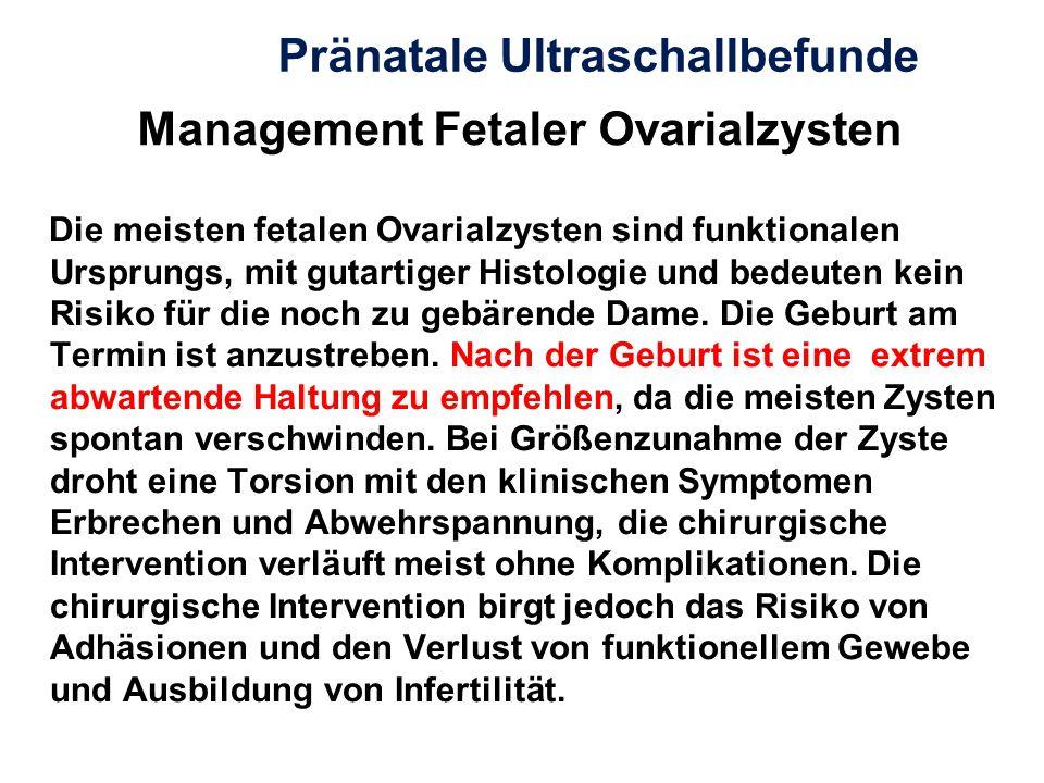 Management Fetaler Ovarialzysten Die meisten fetalen Ovarialzysten sind funktionalen Ursprungs, mit gutartiger Histologie und bedeuten kein Risiko für