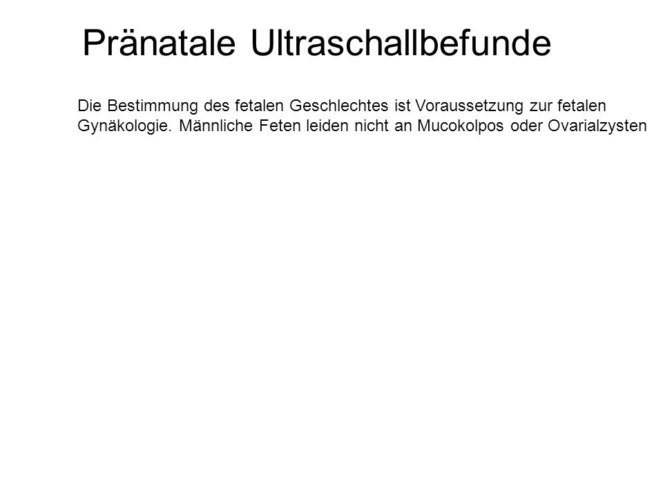 Fetalzeit Uterus 36 SSW Pränatale Ultraschallbefunde