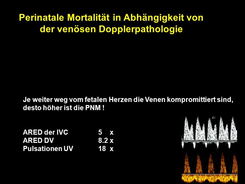 Perinatale Mortalität in Abhängigkeit von der venösen Dopplerpathologie n = 53, 24-35 SSW, IUGR < 2.5 Perz., ARED flow PNM 34% Gramellini D, Piantelli G, Verrotti C, Fieni S, Chiaie LD, Kaihura C.