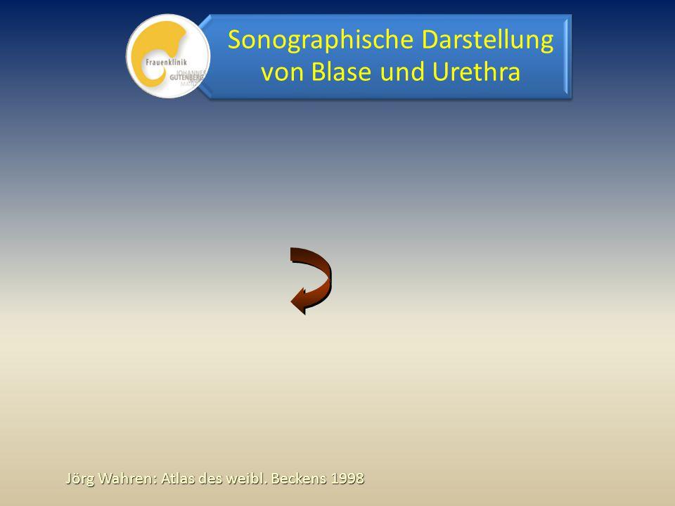 Jörg Wahren: Atlas des weibl. Beckens 1998 Sonographische Darstellung von Blase und Urethra