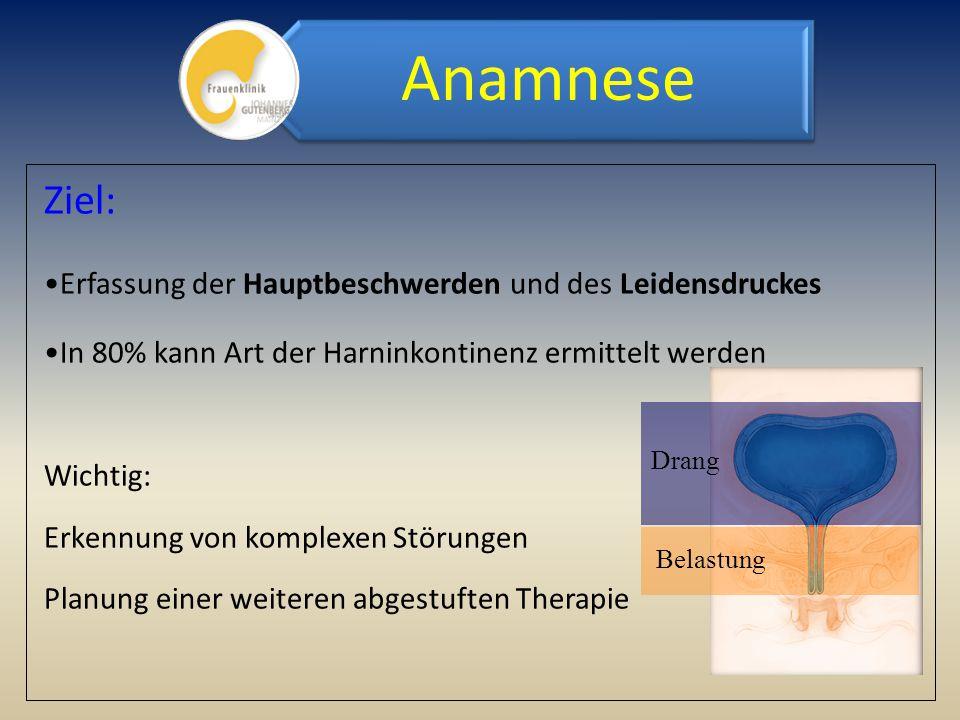 Ziel: Erfassung der Hauptbeschwerden und des Leidensdruckes In 80% kann Art der Harninkontinenz ermittelt werden Wichtig: Erkennung von komplexen Stör