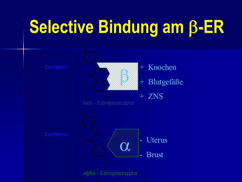 Selective Bindung am  -ER + Knochen + Blutgefäße + ZNS - Uterus - Brust  