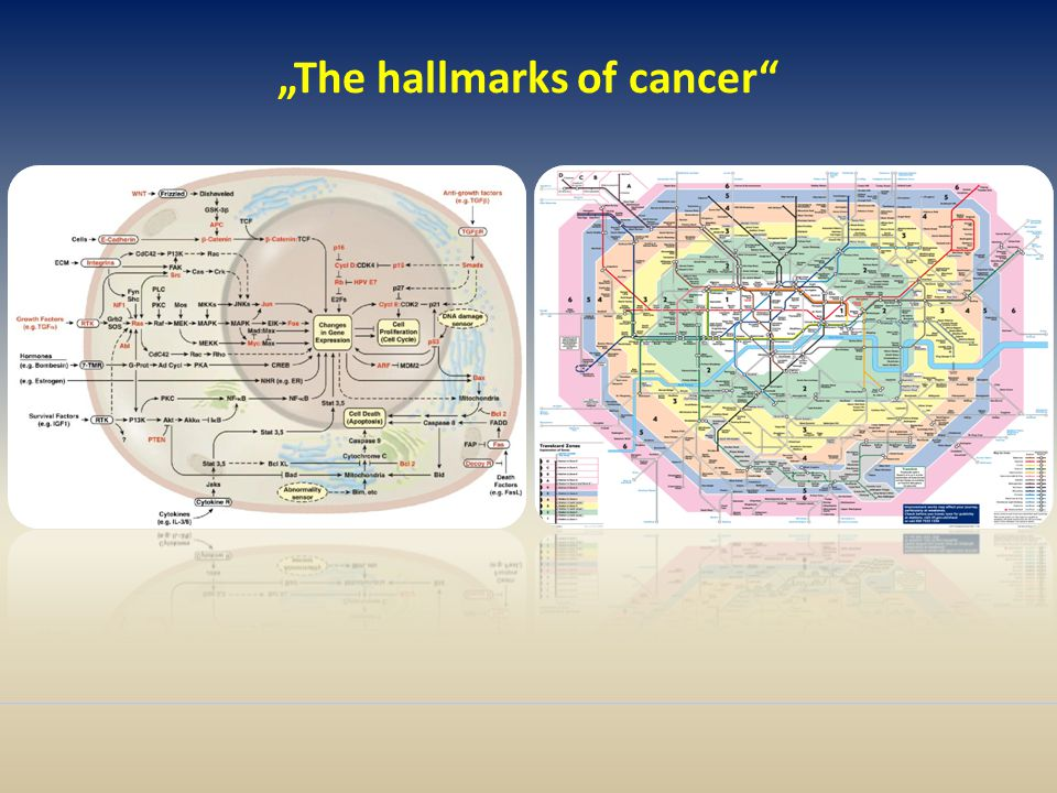 """The hallmarks of cancer"""