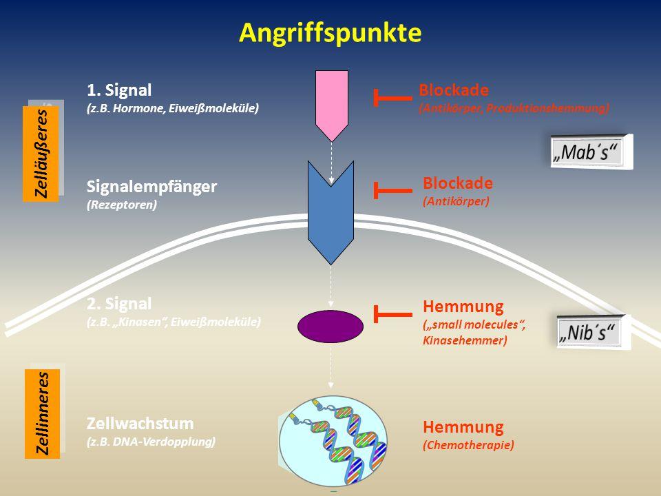 Angriffspunkte Zellinneres Zelläußeres 1.Signal (z.B.