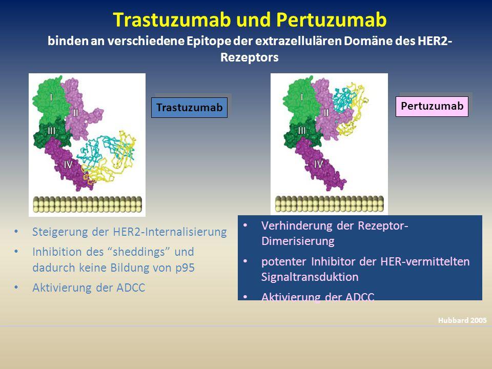 Trastuzumab und Pertuzumab binden an verschiedene Epitope der extrazellulären Domäne des HER2- Rezeptors Steigerung der HER2-Internalisierung Inhibition des sheddings und dadurch keine Bildung von p95 Aktivierung der ADCC Verhinderung der Rezeptor- Dimerisierung potenter Inhibitor der HER-vermittelten Signaltransduktion Aktivierung der ADCC Hubbard 2005 Trastuzumab Pertuzumab